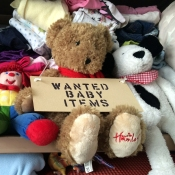 Wanted Baby Items